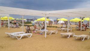 27 7 Песчаный пляж в Сочи. Какой он?